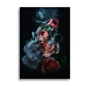 Poster mit Rosenblüten als Wandbild bestellen